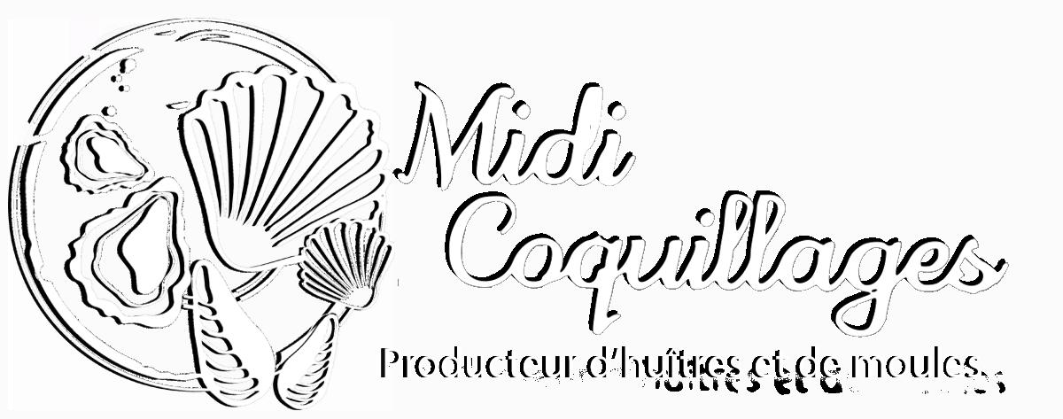 Midi Coquillages
